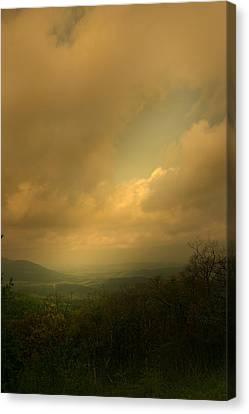 Light Fall Canvas Print by Nina Fosdick