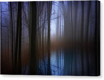 Light In The Woods Canvas Print by Ron Jones