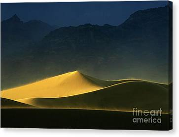 Light Is Everything Canvas Print by Bob Christopher