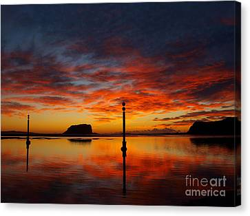 Canvas Print featuring the photograph Light Show by Trena Mara