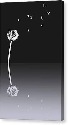 Light Speed Canvas Print by Steven Milner