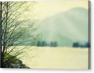 Light Streams Over A Mountain Canvas Print by Roberta Murray