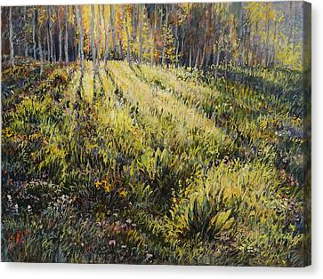 Canvas Print featuring the painting Light Through The Aspens by Steve Spencer