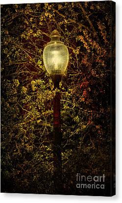 Light Unto Darkness - Greensboro North Carolina Canvas Print by Dan Carmichael