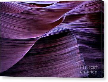 Light Waves Canvas Print