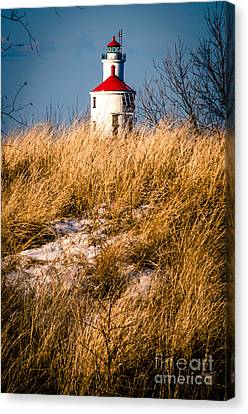 Canvas Print featuring the photograph Lighthouse Amongst The Tall Grass by Mark David Zahn