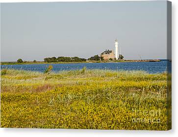 Lighthouse At Yellow Coast Canvas Print