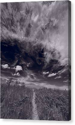 Lighthouse Beach Dunes Bw Canvas Print by Steve Gadomski