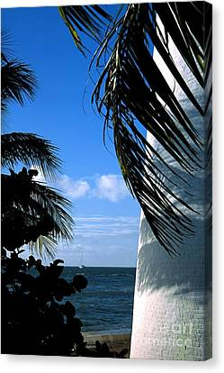 Lighthouse On Key Biscayne In Florida Canvas Print by William Kuta