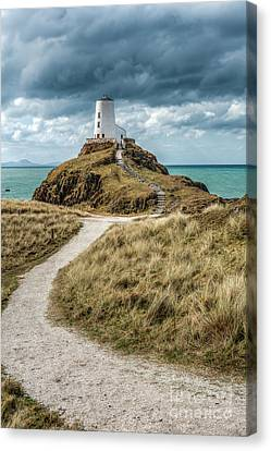 Lighthouse Path Canvas Print