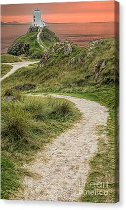 Lighthouse Trail Canvas Print by Adrian Evans