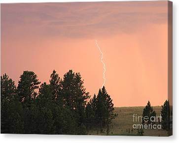 Lighting Strikes In Custer State Park Canvas Print by Bill Gabbert