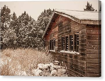 Canvas Print featuring the photograph Snowing Softly by Shirley Heier