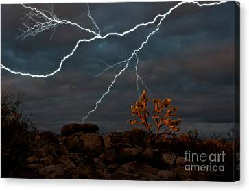 Lightning, Joshua Tree Highway Canvas Print by Mark Newman