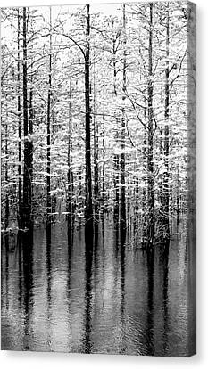 Lightning On The Wetlands Canvas Print