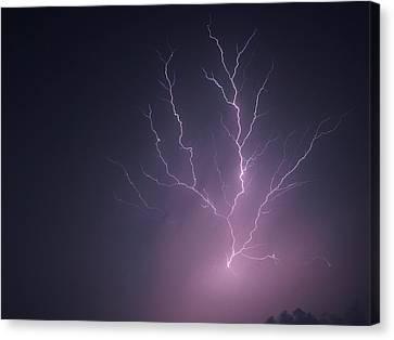Lightning...energy Canvas Print by Tom Druin