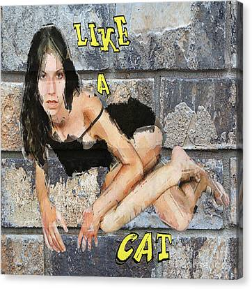 Canvas Print - Like A Cat by Andrew Govan Dantzler