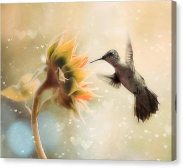 Hummingbird Canvas Print - Like A Moth To A Flame by Amy Tyler