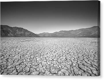 Like The Deserts Miss The Rain Canvas Print by Alexander Kunz