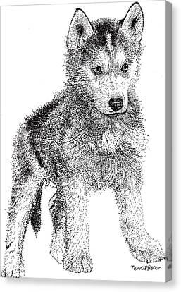 Lil Husky Canvas Print by Terri Pfister