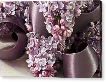 Lilac And Ribbon Curls Canvas Print