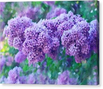 Summer Light Canvas Print - Lilac Cadenza by Georgiana Romanovna