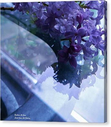Lilac Glass Canvas Print by Barbara St Jean