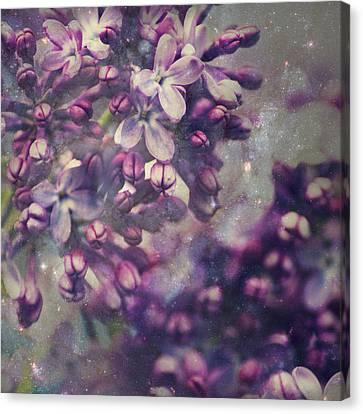 Lilac Canvas Print by Yulia Kazansky