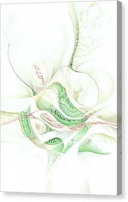 Lilie Canvas Print