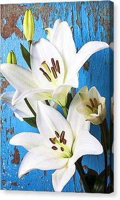 Stamen Canvas Print - Lilies Against Blue Wall by Garry Gay