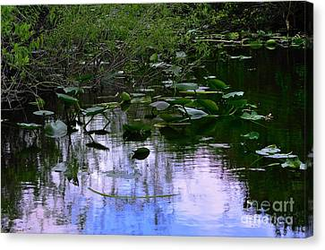 Lilies  Canvas Print by Andres LaBrada