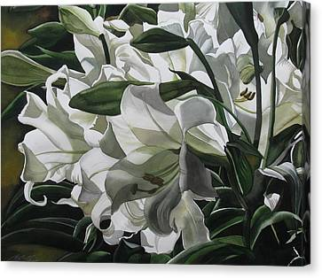 lilies for Easter Canvas Print by Alfred Ng