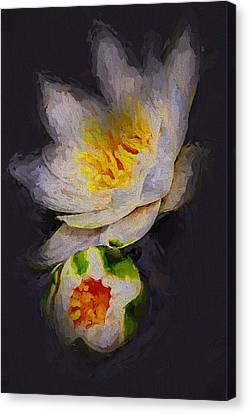 Lilies Canvas Print by Yury Malkov