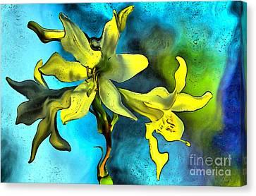Lilly Flower  Canvas Print by Odon Czintos