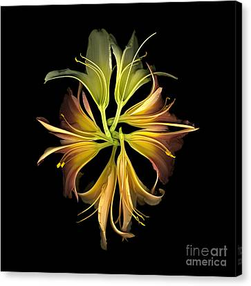 Lily Kaleidoscope Canvas Print by Dale Hoopingarner