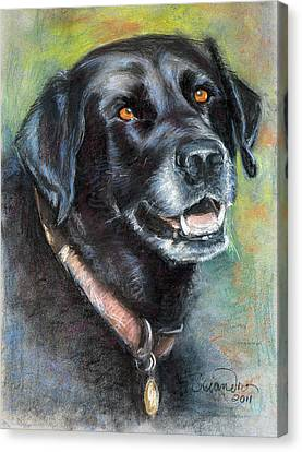 Lily- Black Labrador Retriever Canvas Print by Sciandra