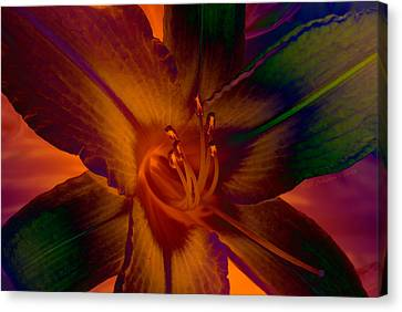 Canvas Print featuring the photograph Lily Colors by WB Johnston
