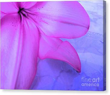 Lily - Digital Art Canvas Print by Robyn King