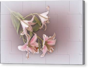 Lily Canvas Print by Elaine Teague
