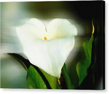 Lily Faux Watercolor Canvas Print
