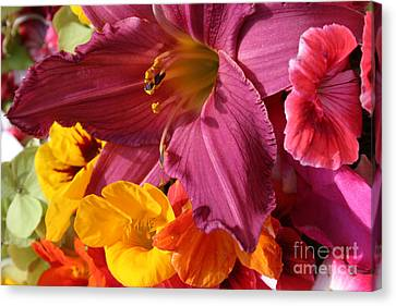 Lily Canvas Print by Jeanette French