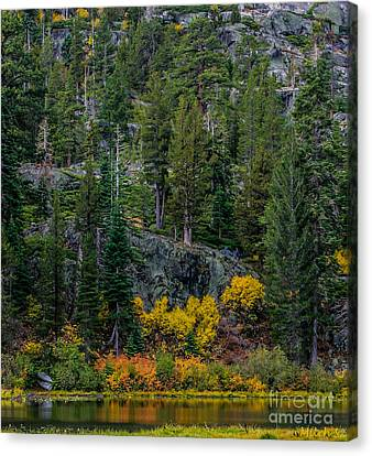 Lily Lake Autumn Canvas Print by Mitch Shindelbower