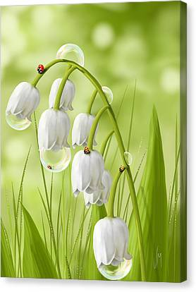 Lily Of The Valley Canvas Print by Veronica Minozzi