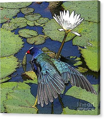 Lily Pad With Bird Canvas Print