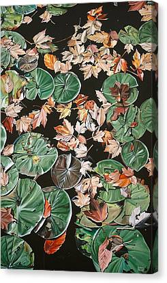Wet Leaves Canvas Print - Lily Pads And Leaves by Anthony Mezza