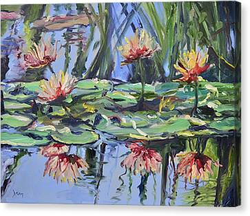 Lily Pond Reflections Canvas Print by Donna Tuten