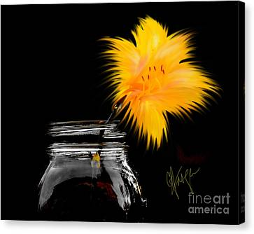 Lily Yellow Canvas Print by Chris Fraser