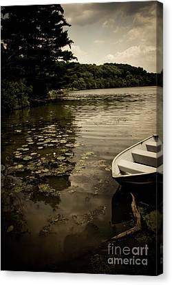 Lilypads In The Lake Canvas Print by Amy Cicconi