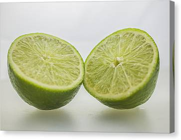 Lime Food Macro 2 Canvas Print by David Haskett