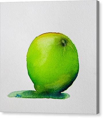Lime Study Canvas Print by Jani Freimann